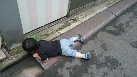 【更新&訂正】電子マネー「Suica」 vs. 「nanaco」の賢い使い分け