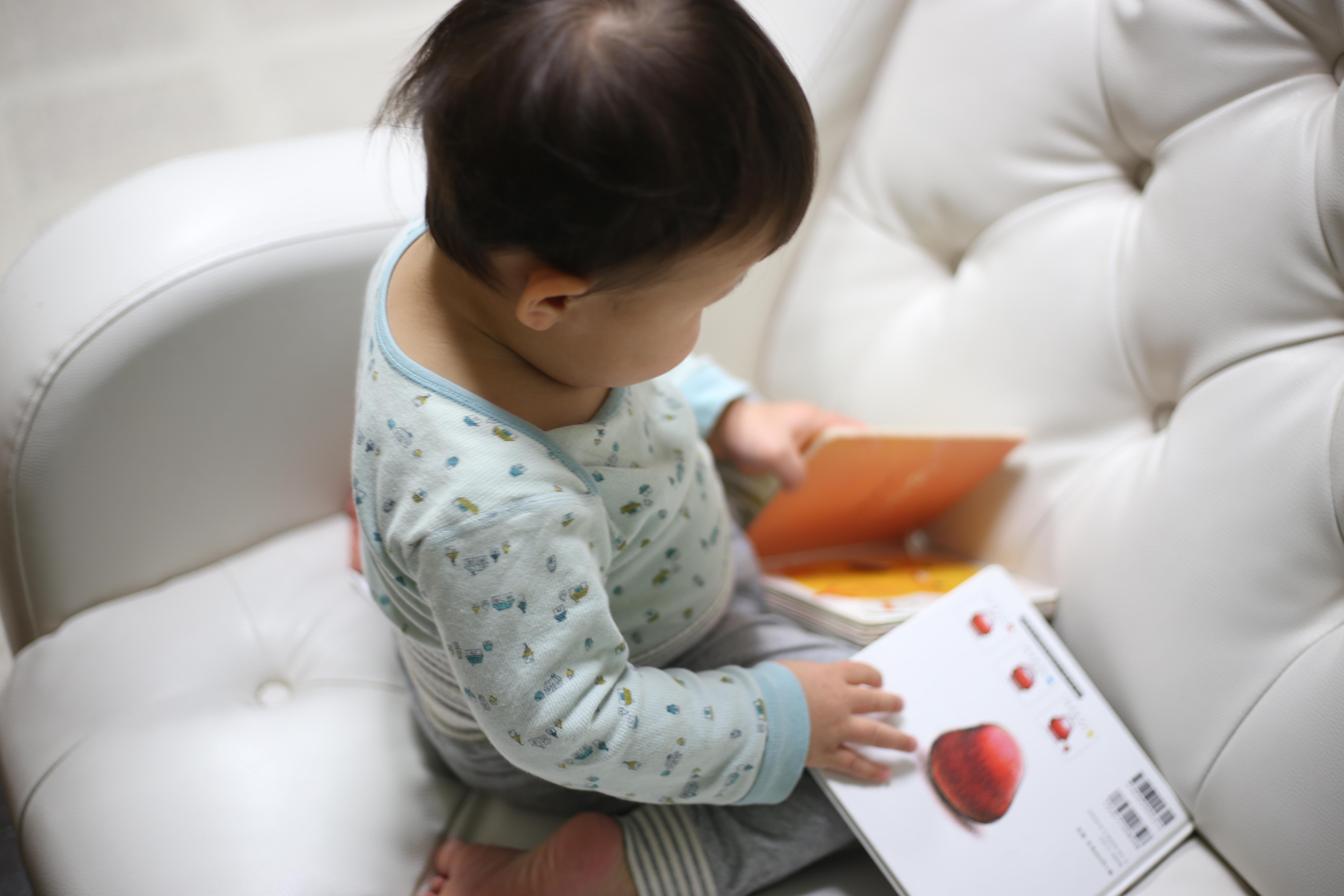 うちの息子のお気に入り絵本をご紹介