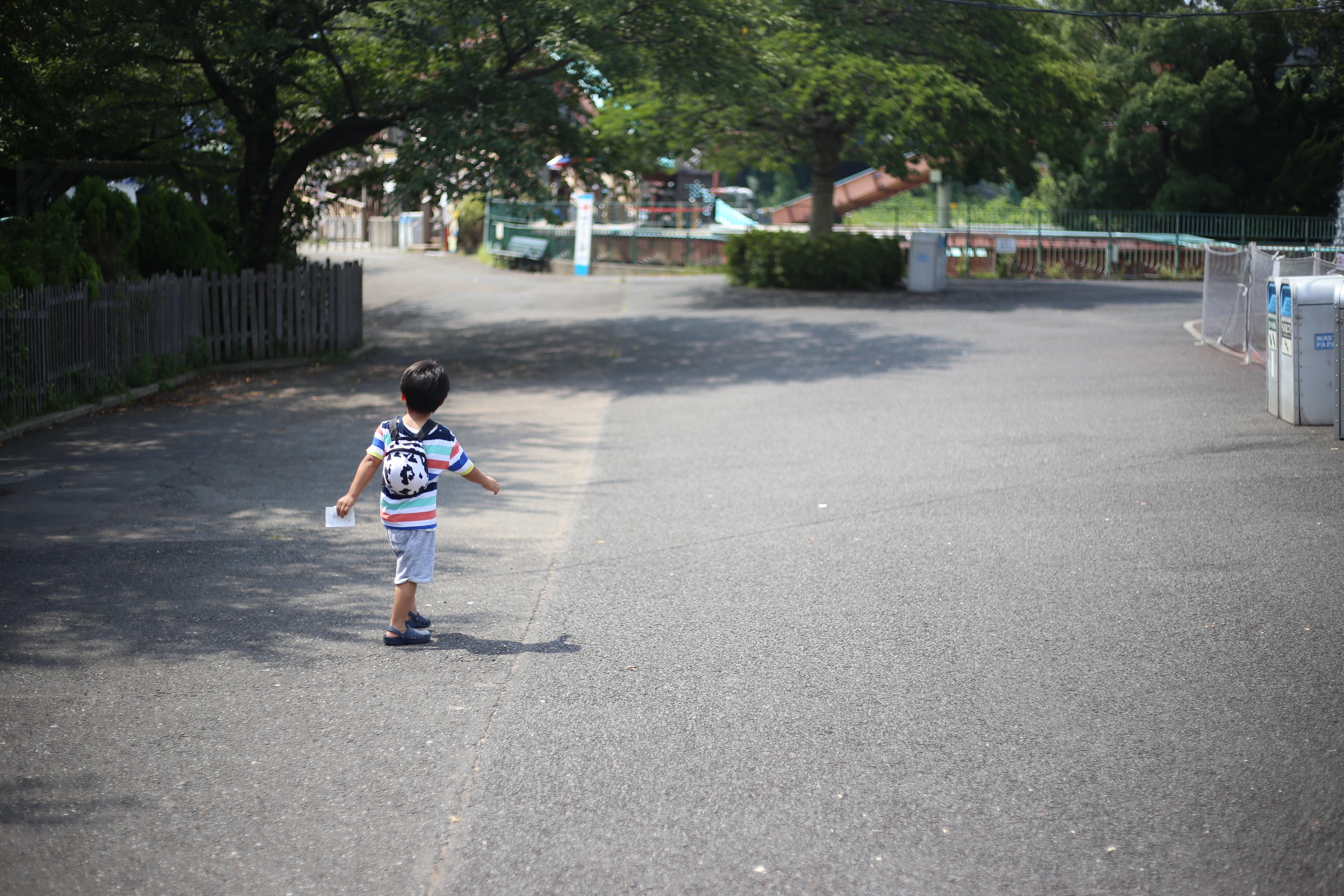 ワーキングマザー的 ふるさと納税のすすめ 無洗米&ぶどう&いちご編!