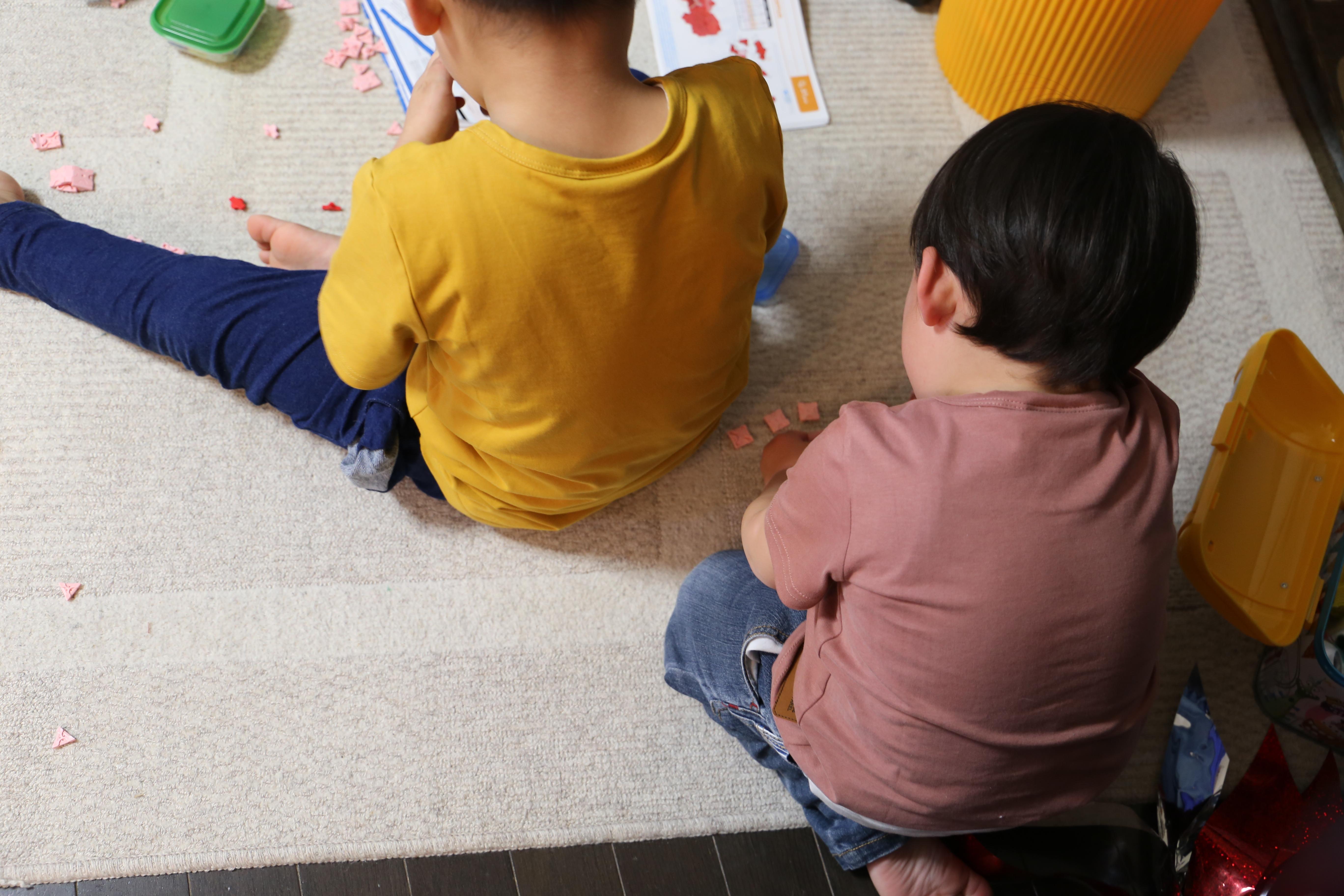 うちの子供たちのテレビ視聴時間 と、それにまつわるひと悶着