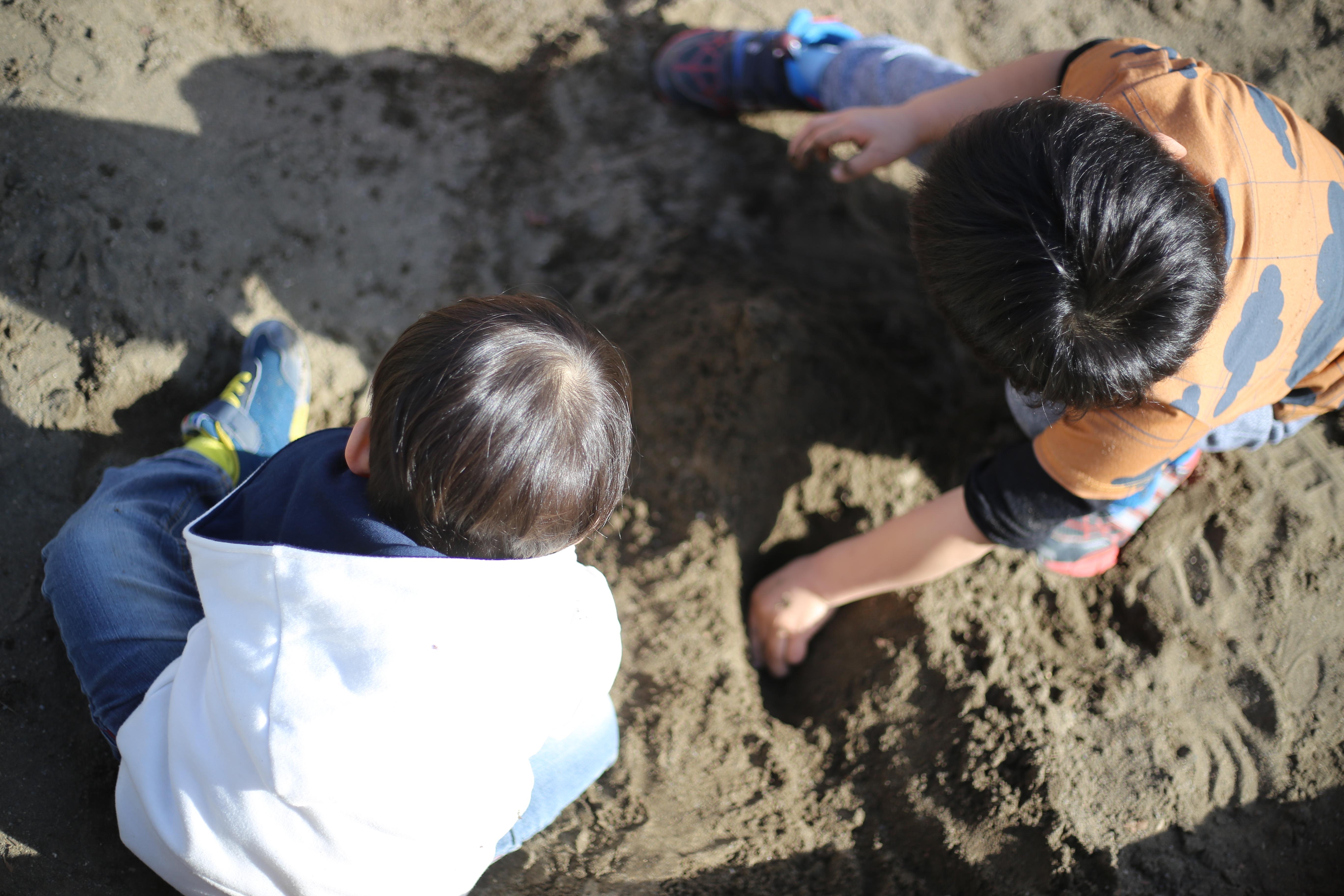 やめて vs. やめて/やめて vs. やりたい 砂山保育士を見て考えた